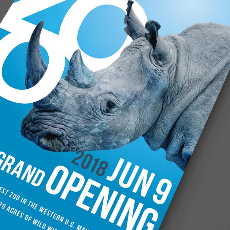 rhinodetail.jpg