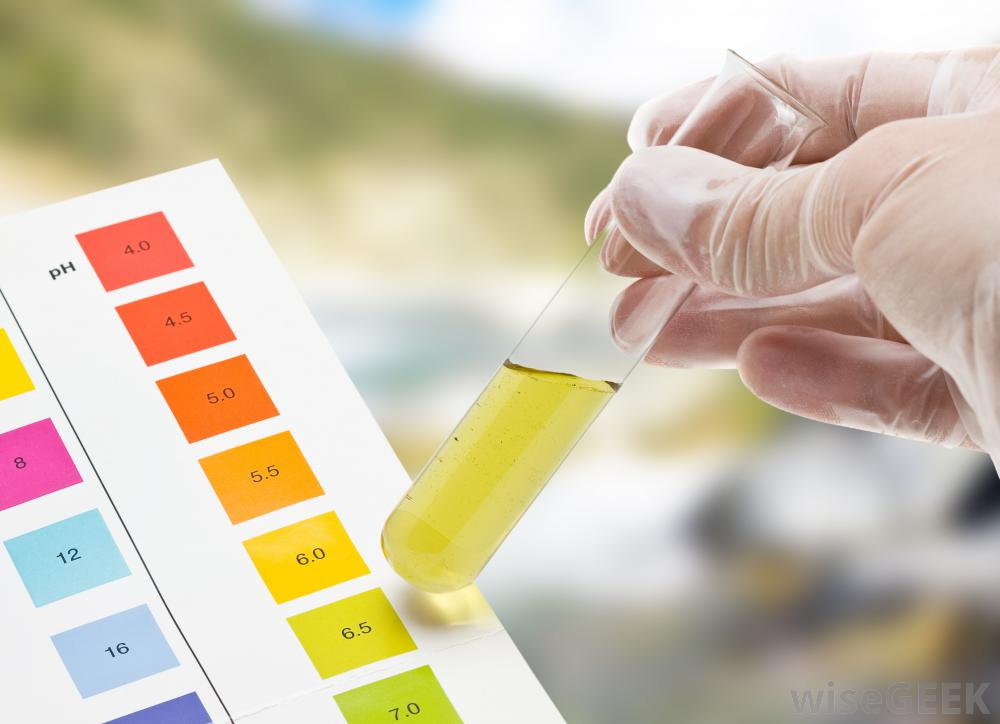 hand-with-test-tube-filled-with-yellow-liquid-and-ph-levels.jpg