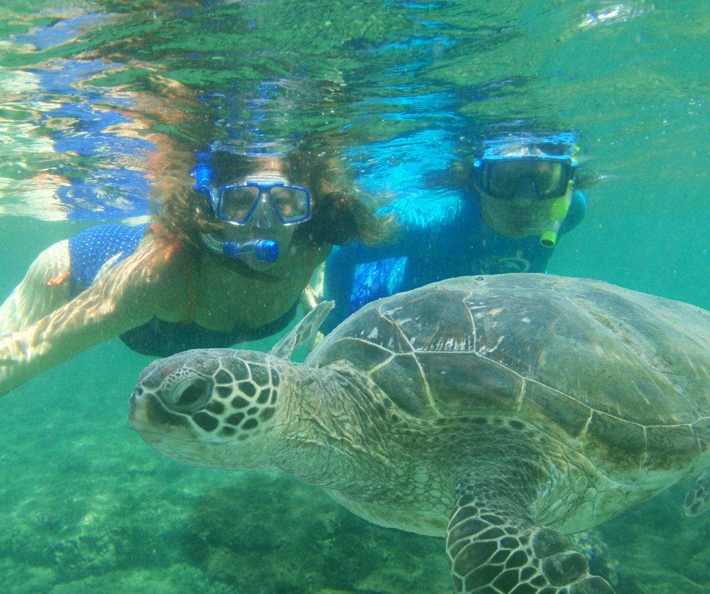 $15 - snorkel rentals