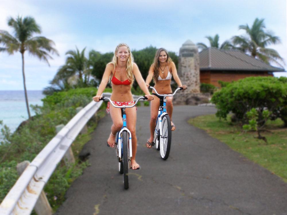 $20 - bike rentals