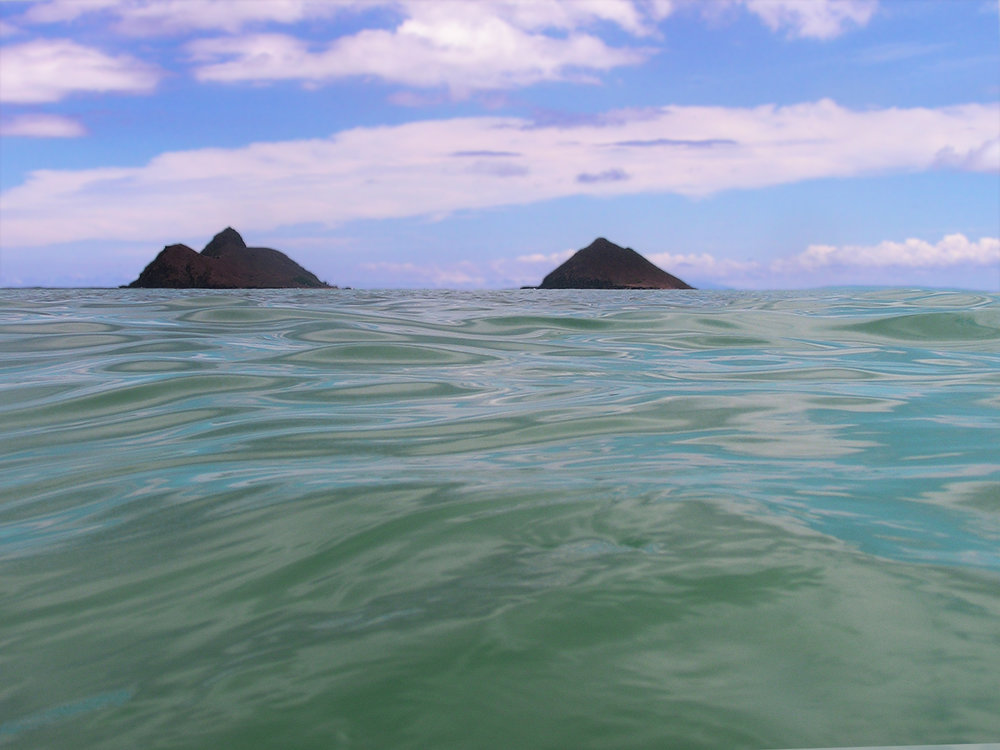 Mokuluas With Oily Water.jpg