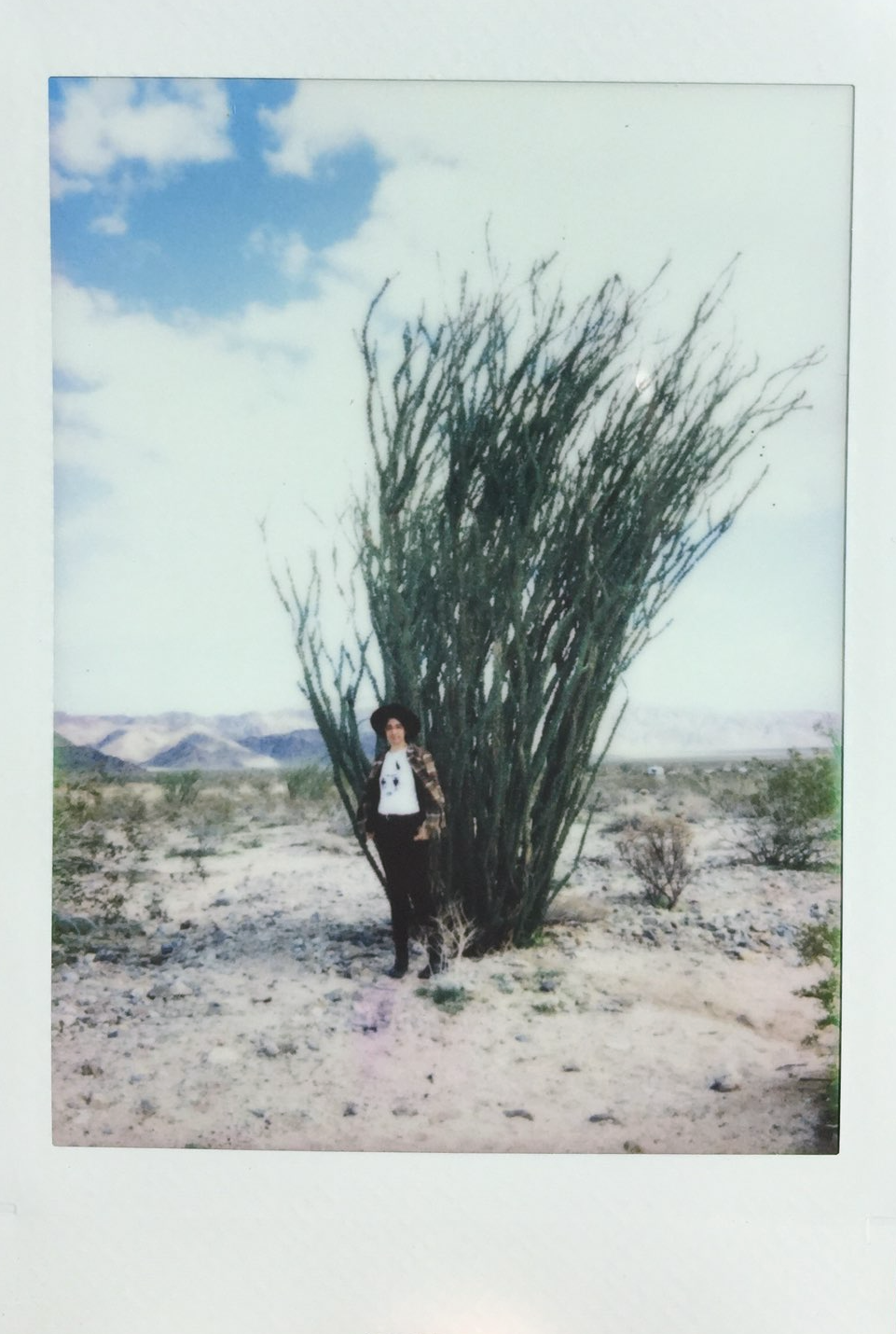 The artist in Joshua Tree, California. -