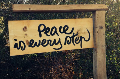 Peace-Is-Every-Step_Stephanie Knox Steiner photo.png