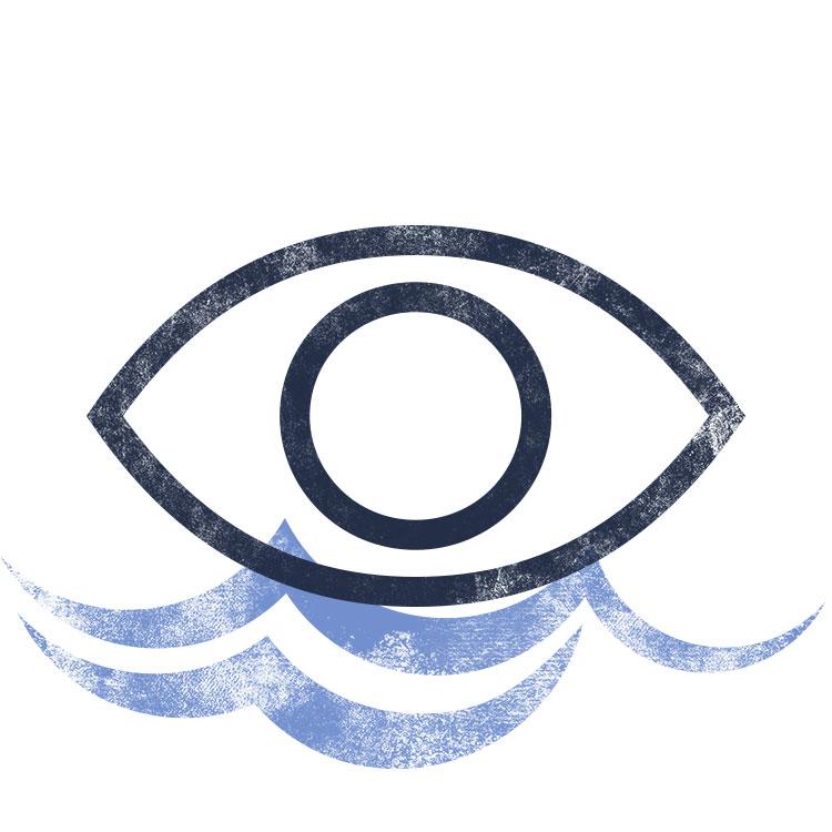 w16_icon_eye.jpg