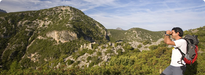 LA NATURE - La province de Cadix a plusieurs zones naturelles de grand intérêt.PLUS D'INFORMATIONS ICI