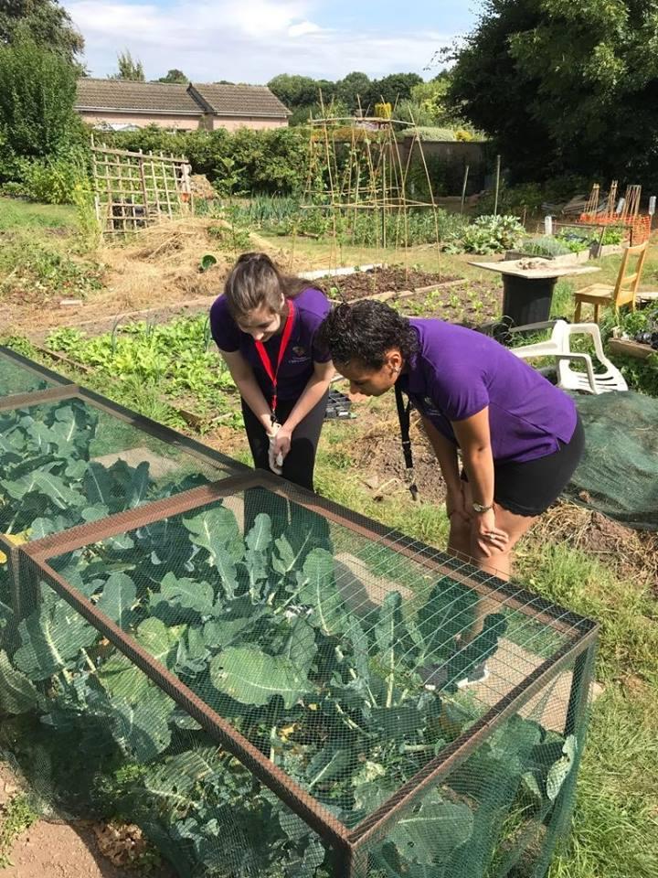 trainees garden.jpg