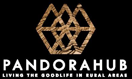 Logo PANDORAHUB BLANCO vertical.png