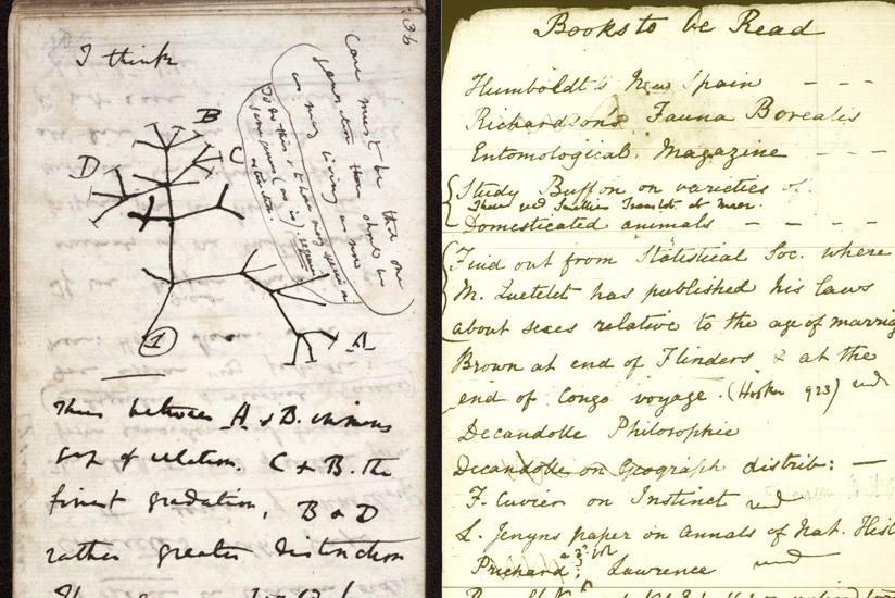 darwin-journal.jpg.824x0_q71.jpg