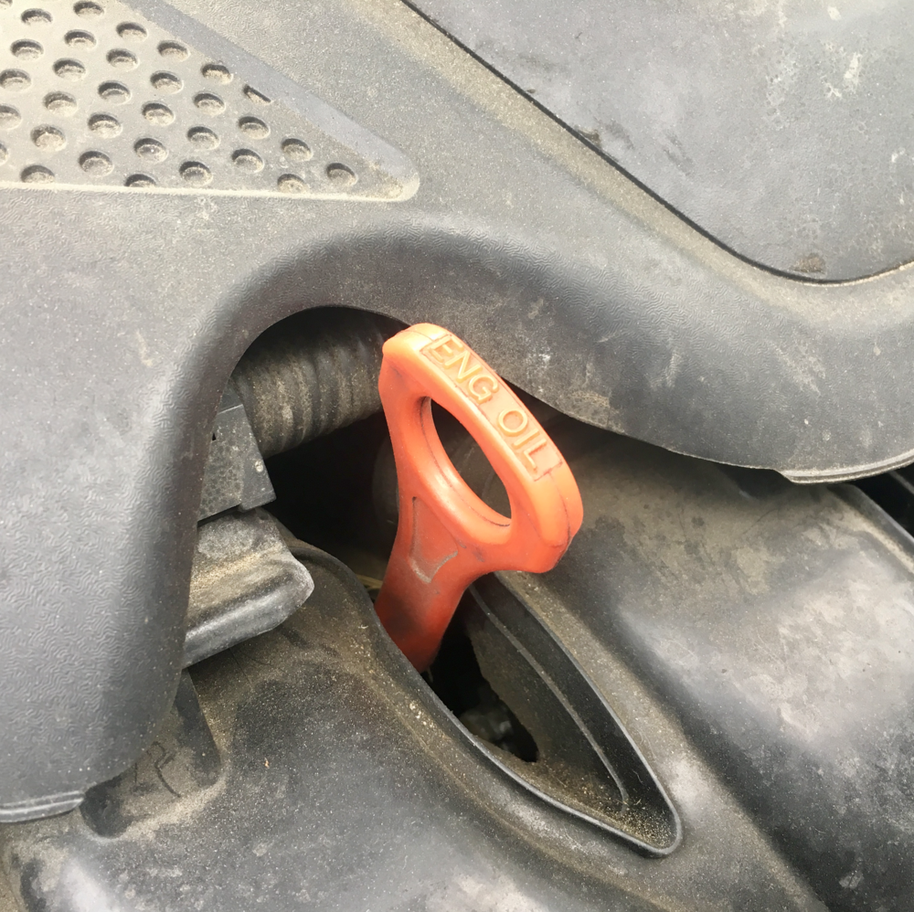 The engine oil dipstick.