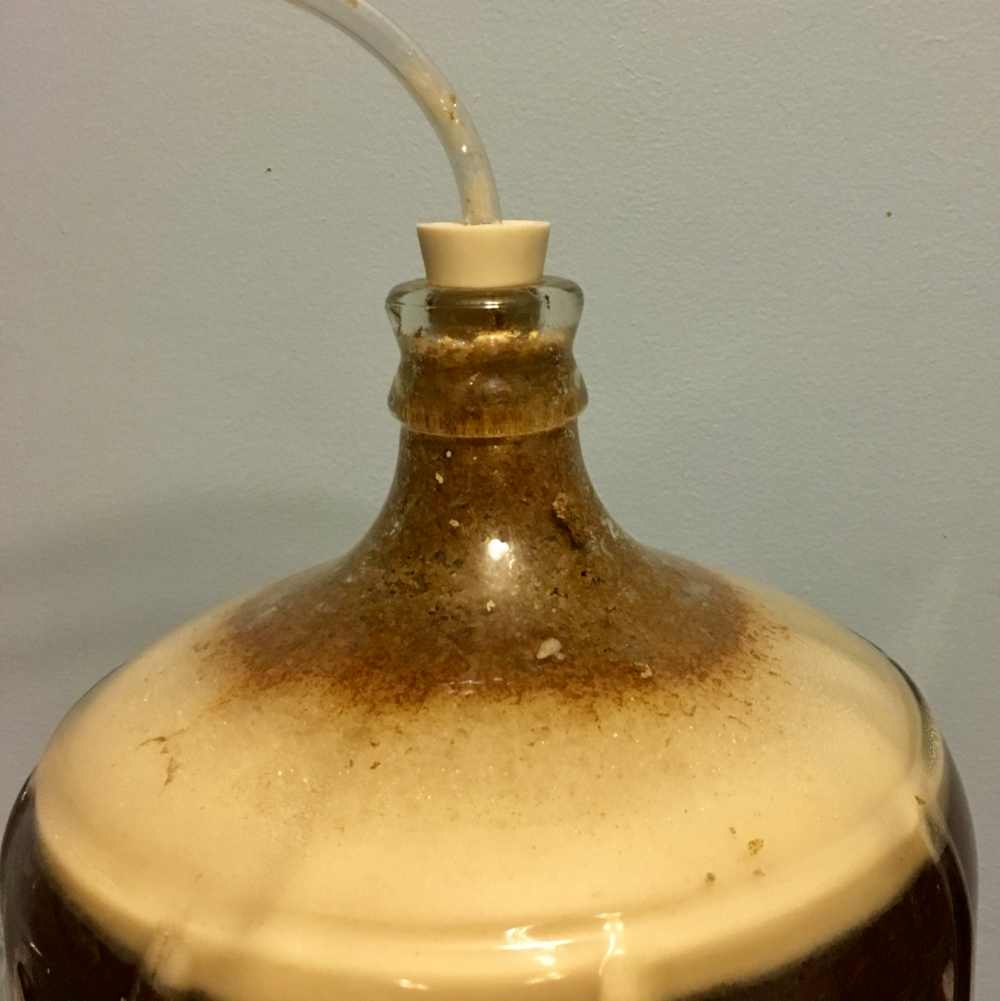 This is our carboy that suffered a blowout. If you see this kind of matter forming on top of the foam and getting close to the airlock, a blowout is probably imminent.