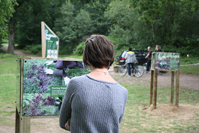 Exhibition in the Forest of Dean