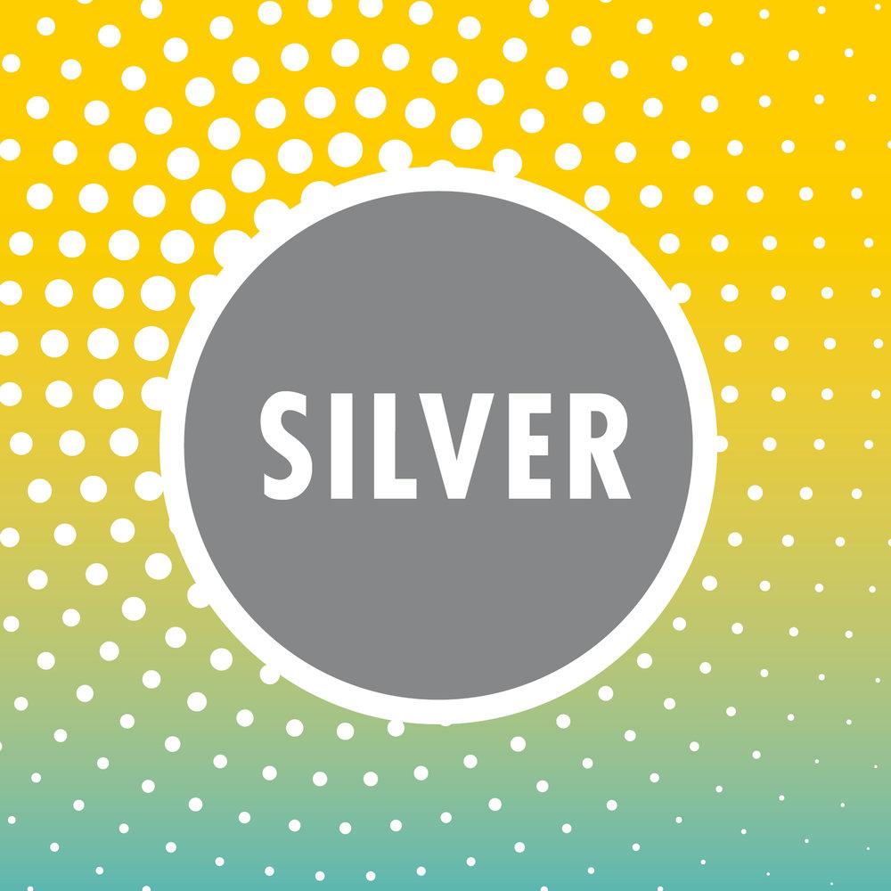 Solo_Silver.jpg