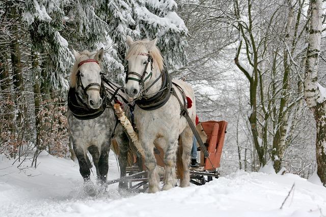 sleigh-ride-549727_640.jpg