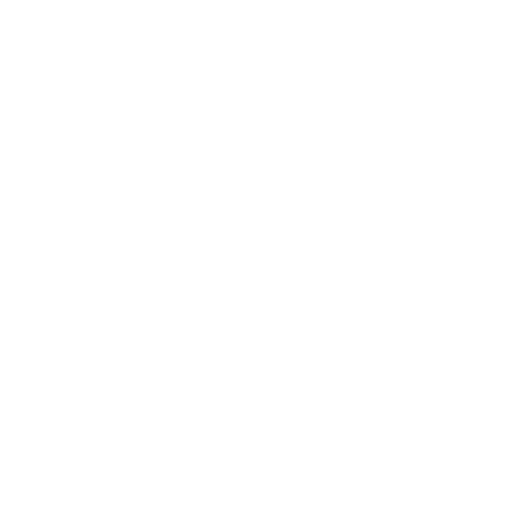 Willow James Construction