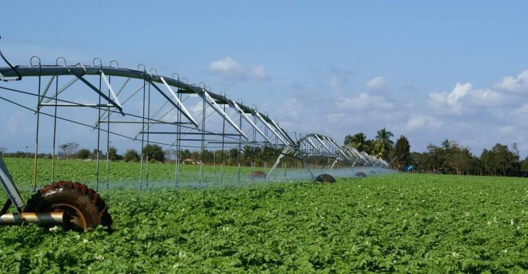 Agriculture in northeast North Carolina