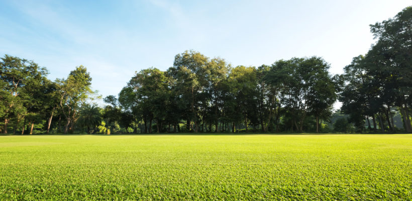 Faster Green Times on Golf Course