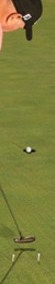 Butch-Harmon-putting-drill.jpg