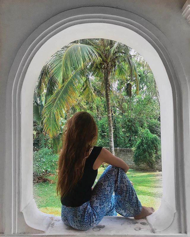 Death by coconut🥥 🏝 . . . . . . . . . #srilankatrip #srilankatravel #jungleland #greenery🌿 #islandlife🌴 #framedesign