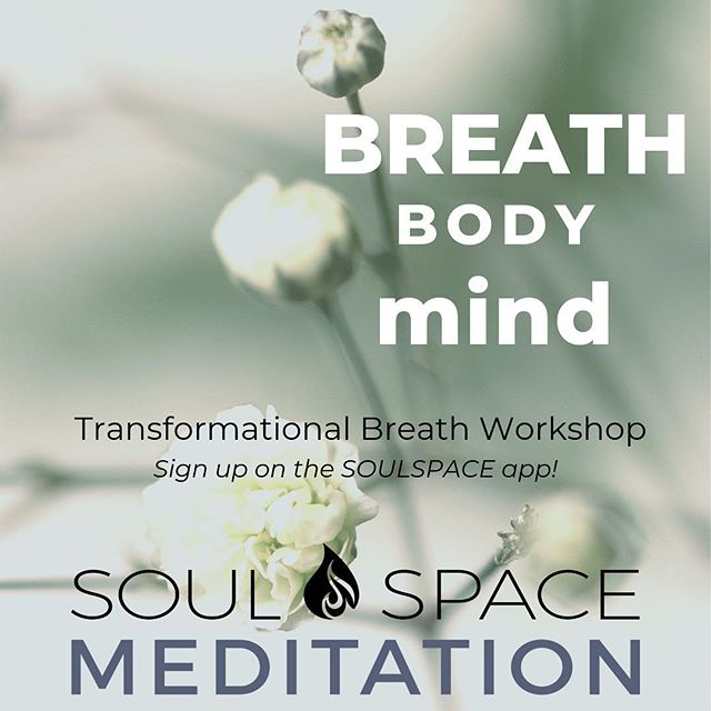 This Sunday! 2/10 https://www.wellnessliving.com/rs/event/soulspace_meditation_wellbeing?k_class_tab=13525&uid=0&id_class_tab=2