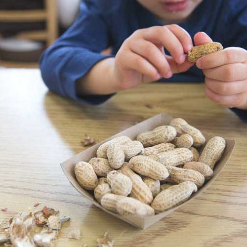FOOD ALLERGIES - For treatment of food allergies and anaphylaxis, turn to the experienced team at Mountain West ENT in Bountiful and Layton.