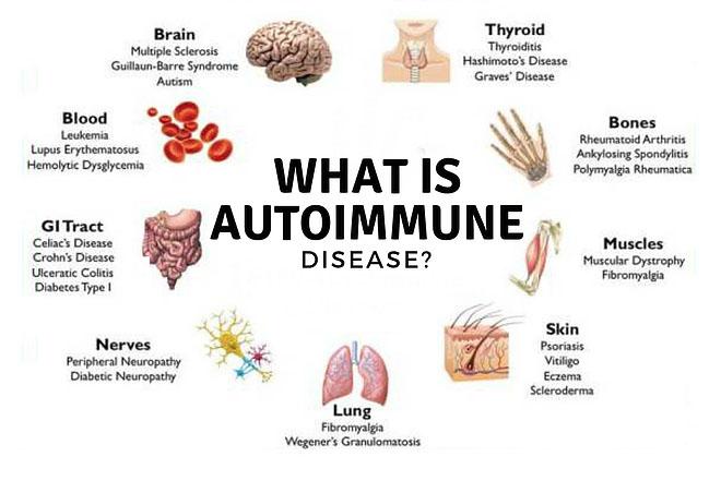 Autoimmune Graphic.jpg