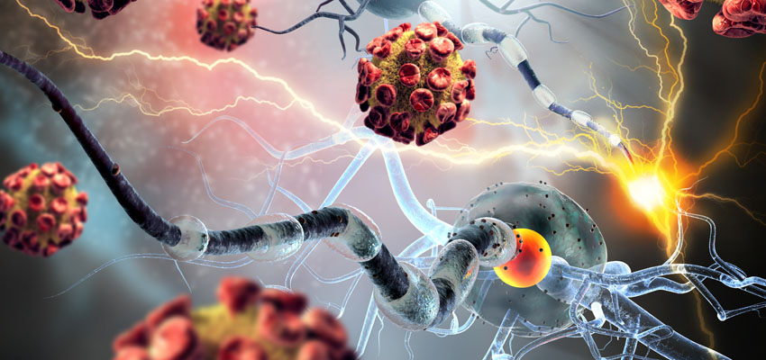 Autoimmune Disease: Addressing Four Causes — Flourish | Compounding