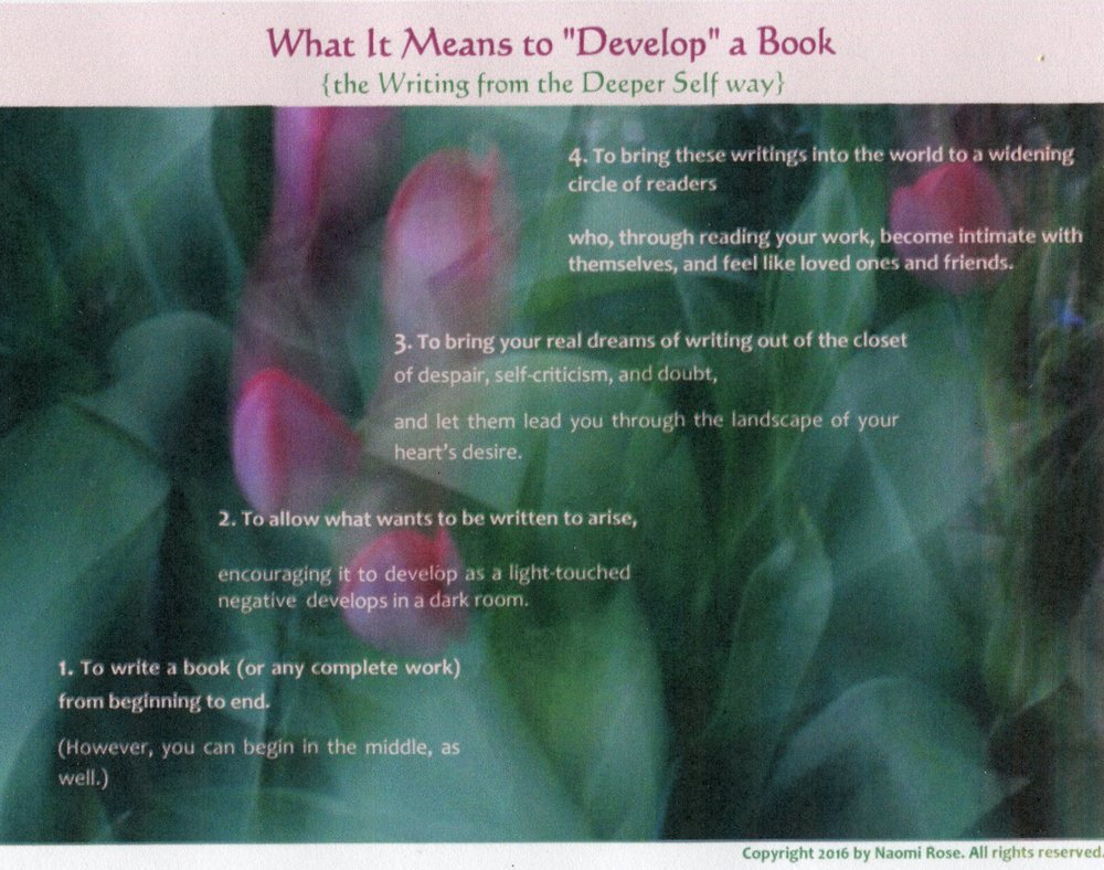 What It Means to Develop a Book visual.jpg