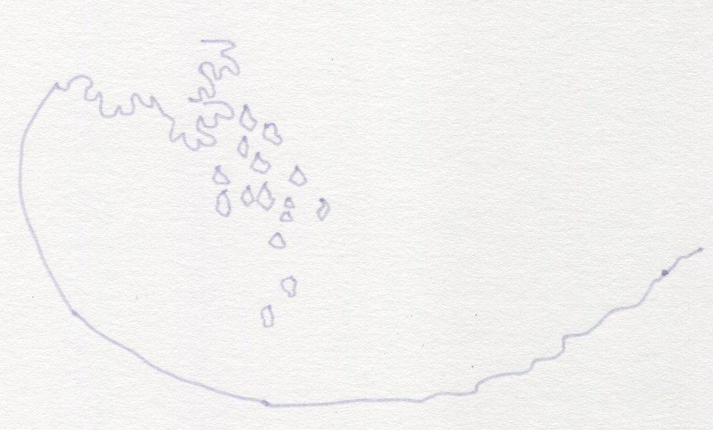 Wave & Drop illustration #11.jpg