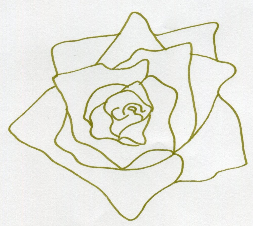 Gold rose outline (drawn) (1).jpg