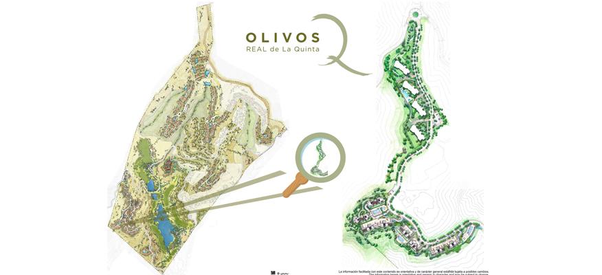 los-olivos-009.jpg