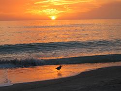 LBK sunset 1 for blog 72.jpg