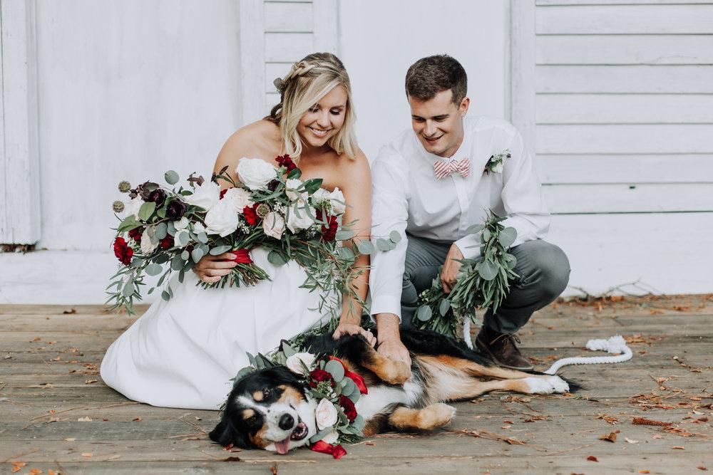 doyles vineyard wedding - raleigh wedding photographer - dog at wedding - winter wedding-3397.jpg