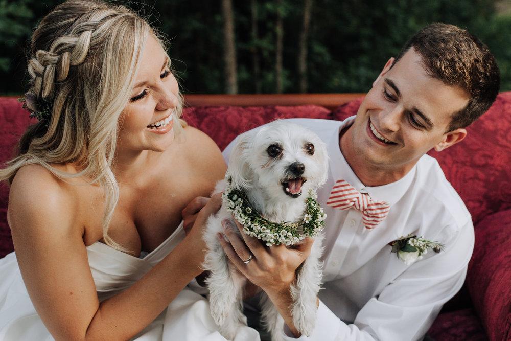 Dog at wedding, floral collar and leash for wedding - rose gold wedding theme, fall wedding - North Carolina Wedding Photographer, Raleigh NC