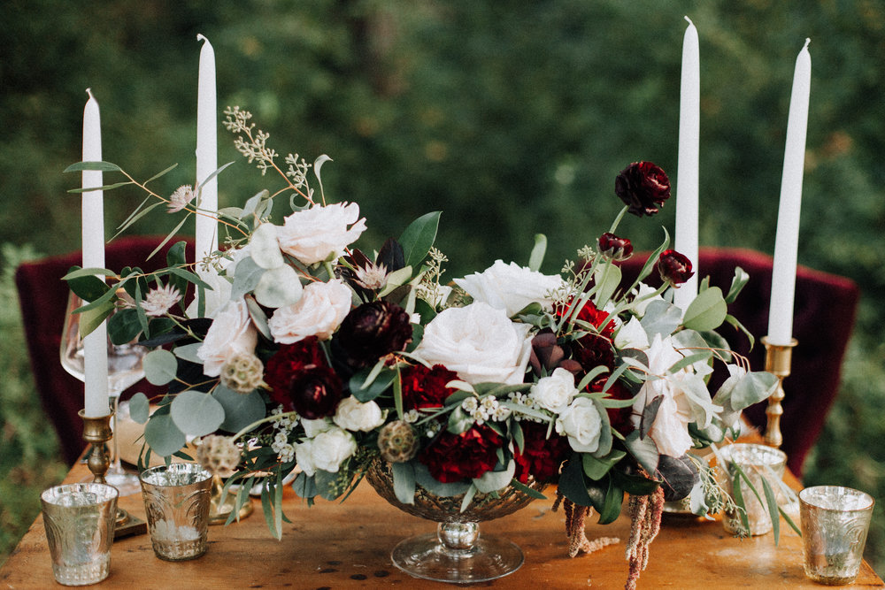 +Raleigh +Vineyard +Wedding +Venue -+Wedding +Photographer +North Carolina - +Raleigh +Wedding - +Dog +in +Wedding -3549.jpg