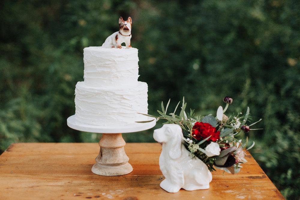 +Raleigh +Vineyard +Wedding +Venue -+Wedding +Photographer +North Carolina - +Raleigh +Wedding - +Dog +in +Wedding -3682.jpg