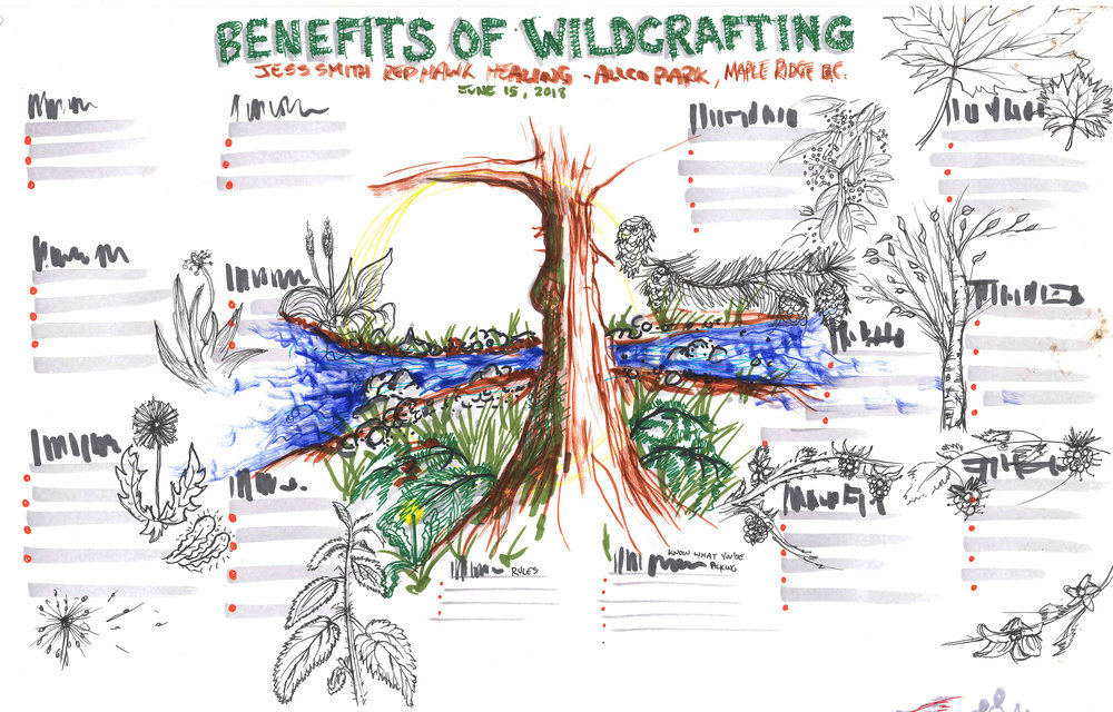Benefits of Wildcrafting pre-event mockup.