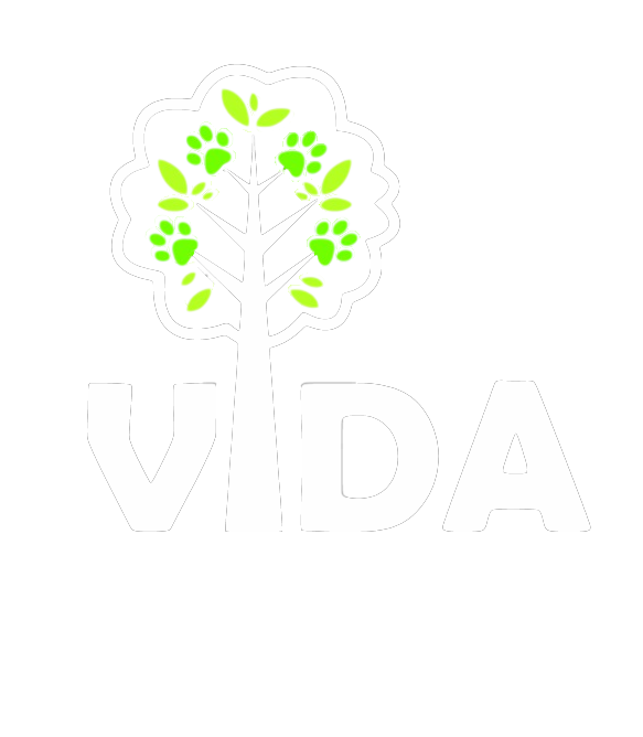 VIDA (no words) transparent tree white.png