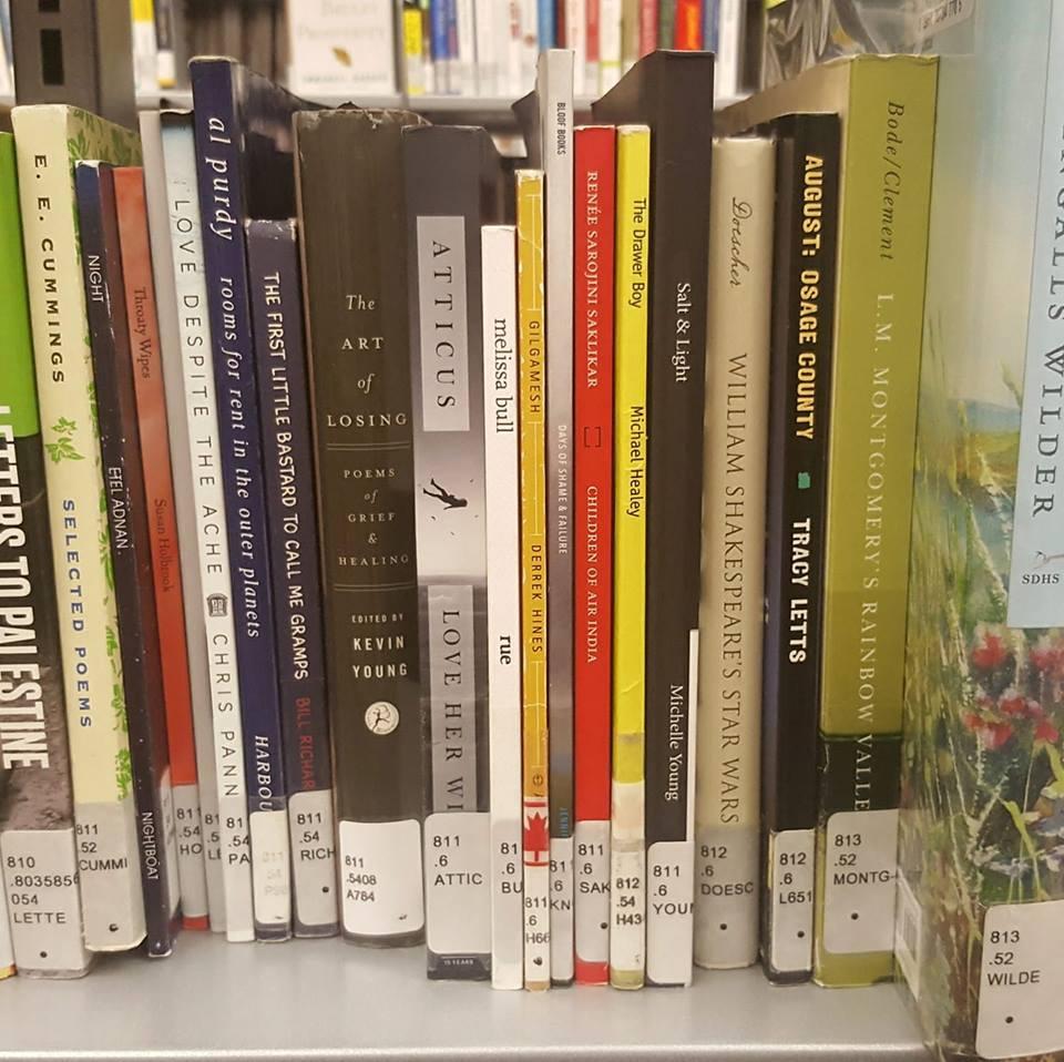 """Salt & Light"" atOttawa Public Library -"