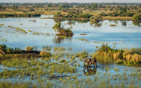 Okavango2.png