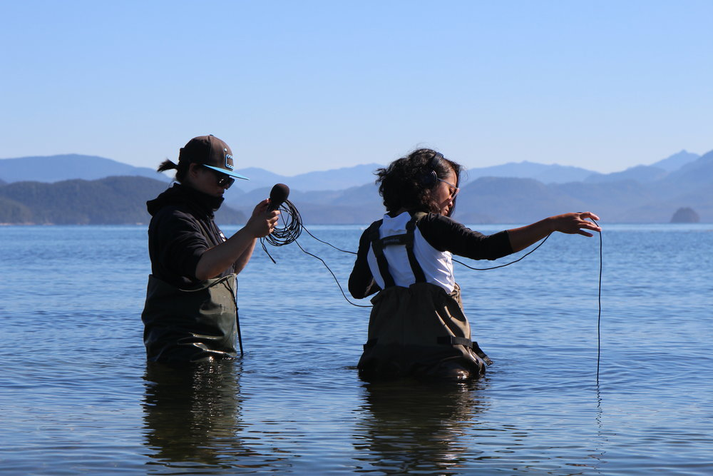Students listen to underwater sounds using a hydrophone, Acoustic Ethnography course at Bamfield Marine Science Centre, Huu-ay-aht First Nations territory (2016).