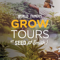 Hands-On Seed to Shelf Grow Tour - Experience a unique behind the scenes tour of how top quality cannabis is grown, extracted, and refined into finished products. Tour includes CBD education and joint-rolling lessons.