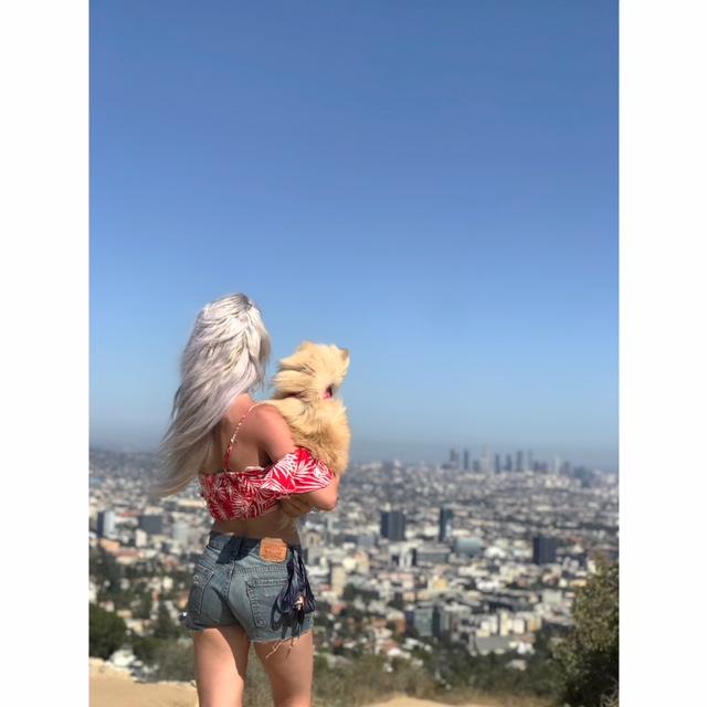 Hello, Los Angeles -
