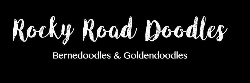 Rocky Road Doodles