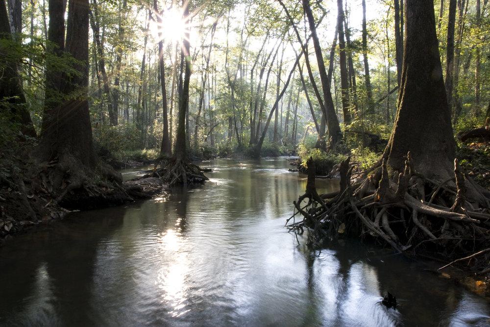 Little Choctawhatchee River
