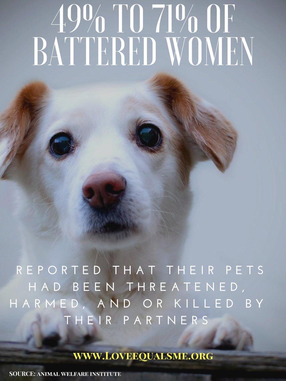 pets domestic violence.jpg