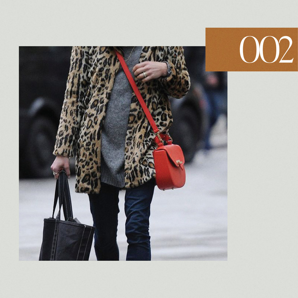 leopardcoats2.jpg