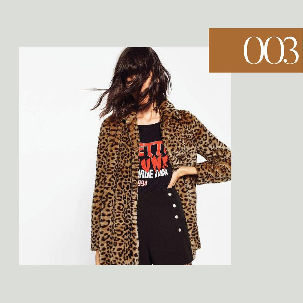 leopardcoats3.jpg