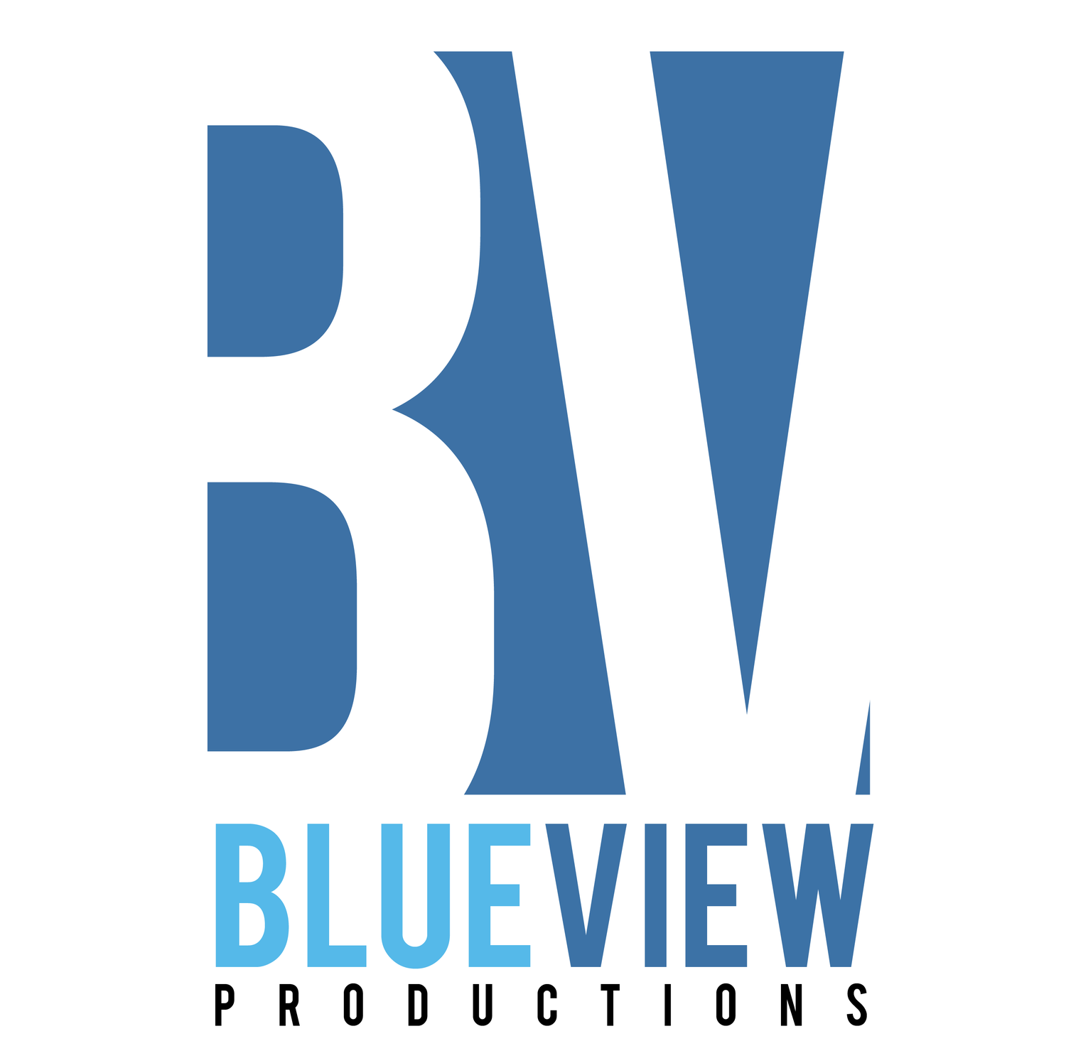 BlueView