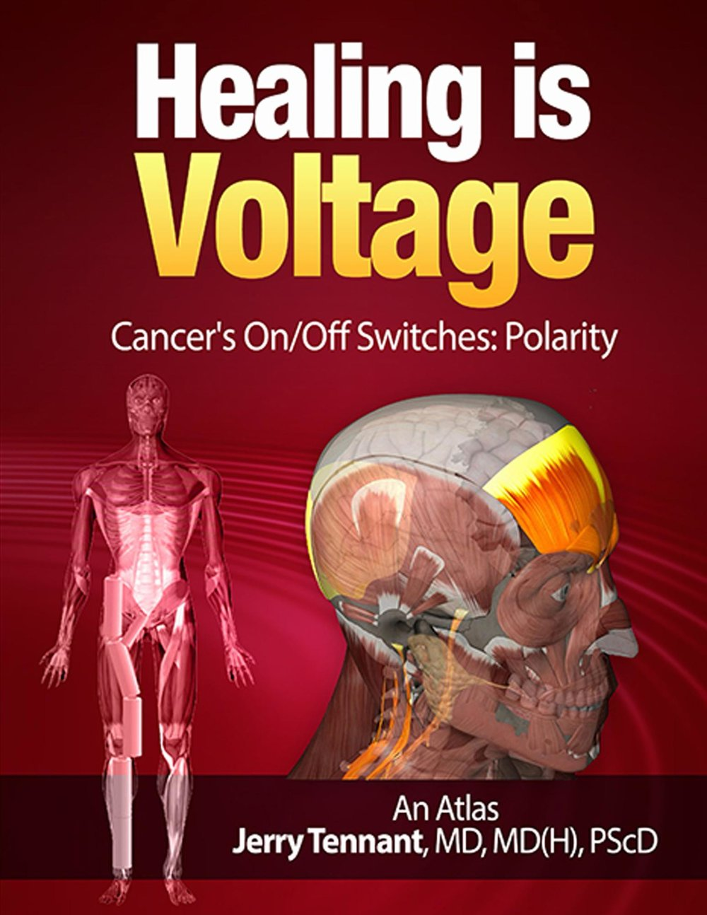 Very few health articles mention pH as a factor of voltage. They persist on explaining everything through the lens of chemical reactions only, leaving us to continue believing only in the paradigm of mechanical (surgery), and chemical (drugs) solutions to issues.  We are missing a HUGE component!