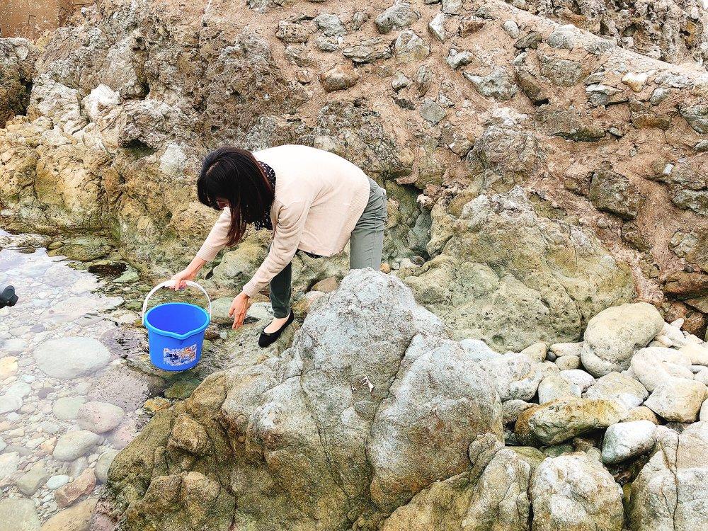 夫婦岩のすぐ近くの海水を汲みます